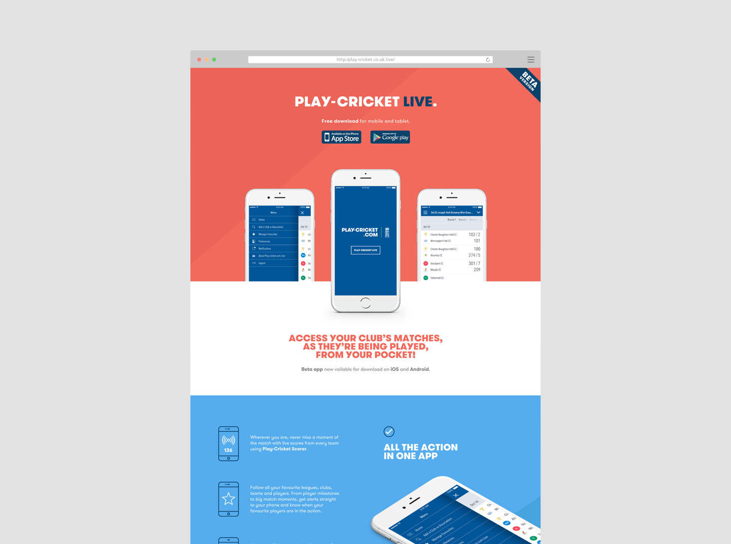 Play Cricket 01